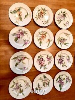 1951 Royal Worcester bone china gilt-edged orchid dinner plates (Set/12) signed