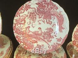 63 Piece Set Service For 12+ Royal Crown Derby Pink Aves Dinner Salad Plate Cup