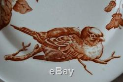 Antique French Set of 8 White Ironstone Dinner Plates with Sparrow Bird