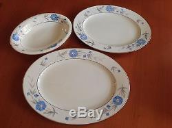Hand Painted Dinner Set For 6 & Serving Plates 39 Pcs -castleton 1960's