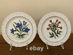 Hand-Painted Italian Botanical Earthenware Salad Dessert Plates Set of 8