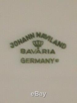 JOHANN HAVILAND BAVARIA I GERMANY BLUE GARLAND (Dish Set)