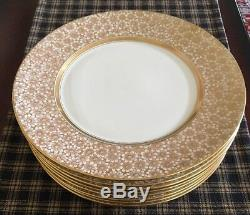 Lamberton Ivory China Vintage Set Of 8 Dinner Plates. Excellent Condition