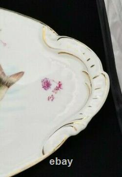 Limoges Fish Plate Set Charger and 12 Dinner Plates Austria
