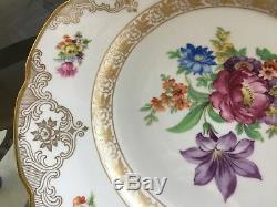Set 11 Dresden Schumann Bavaria Dresden Flowers Empress 11 Dinner Plates Us Zon