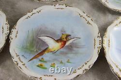 Set 12 French limoges marked porcelain bird pheasant dinner plate signed