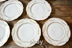 Set Haviland Limoges France Floral Dinner Plates 10 Hand Painted Porcelain