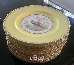 Set Of 12 Royal Crown Derby Dinner Plates Gold Rim Vintage China