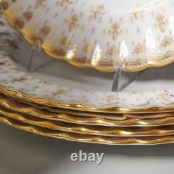 Set Of 12 Spode Fleur De Lys Gold Dinner Plates Y8063 A