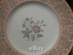 Set Of 12 Wedgwood Pink Wildflower Dinner Plates