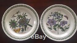 Set Of 13 Potmeirion Botanic Garden Dinner Plates