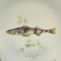 Six Piece Set Richard Ginori QUENELLE Gudgen (Smooth) Dinner Plates Fish ITALY