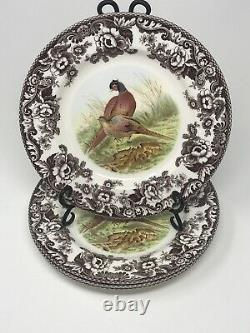 Spode Woodland Pheasant Dinner Plates Set of 4 10 3/4 New