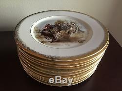 Stunning Set Vintage Princess Turkey Platter and 12 Dinner Plates Thanksgiving