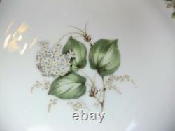 Superb vintage Franconia White Hydrangea Dinner Service / Set for 10. Plates
