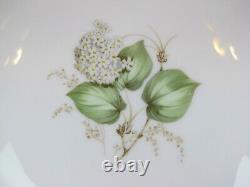 Superb vintage Franconia White Hydrangea Dinner Service / Set for 6. Plates