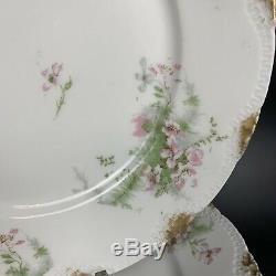 Theodore Haviland Limoges SET of 10 Apple Blossom Dinner Plates