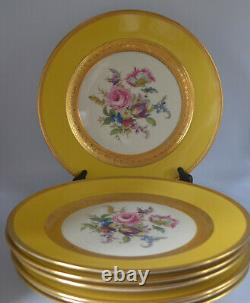 Thomas Bavaria Set Of 7 Dinner Plates Gold Yellow Flower Decoration