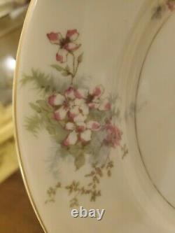 Vintage Theodore Haviland New York Apple Blossom 24 Pc Starter Set Service For 4